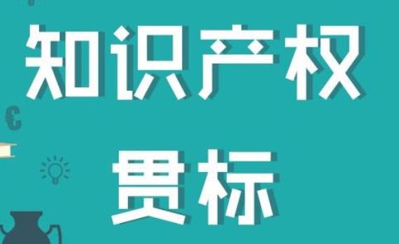 广东知识产权贯标亚搏网络娱乐网页版流程有哪些?