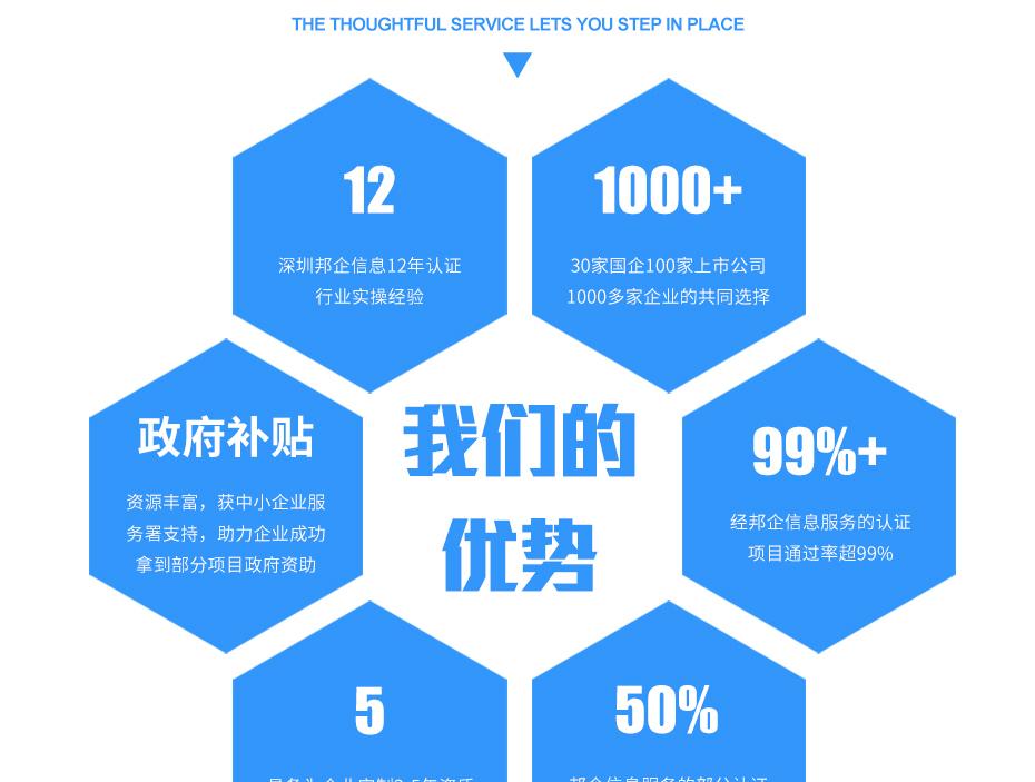 安防资质亚搏网络娱乐网页版_13