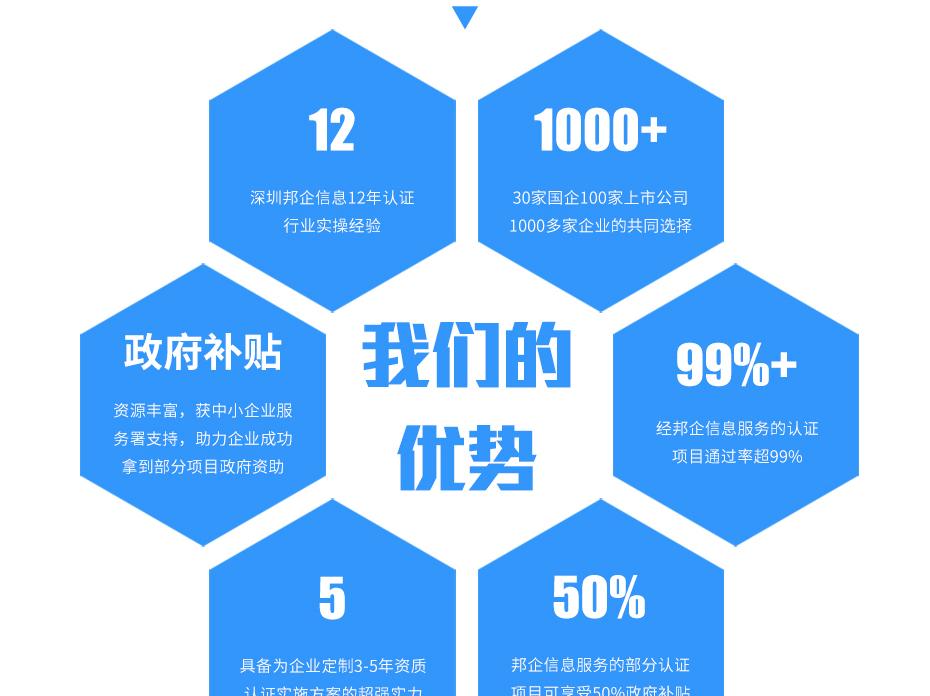ISO20000亚搏网络娱乐网页版_13
